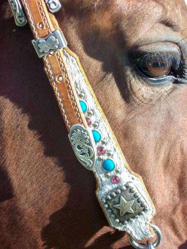 Kind eyes, bay horse wearing a white hair on headstall with turquoise and pink stones
