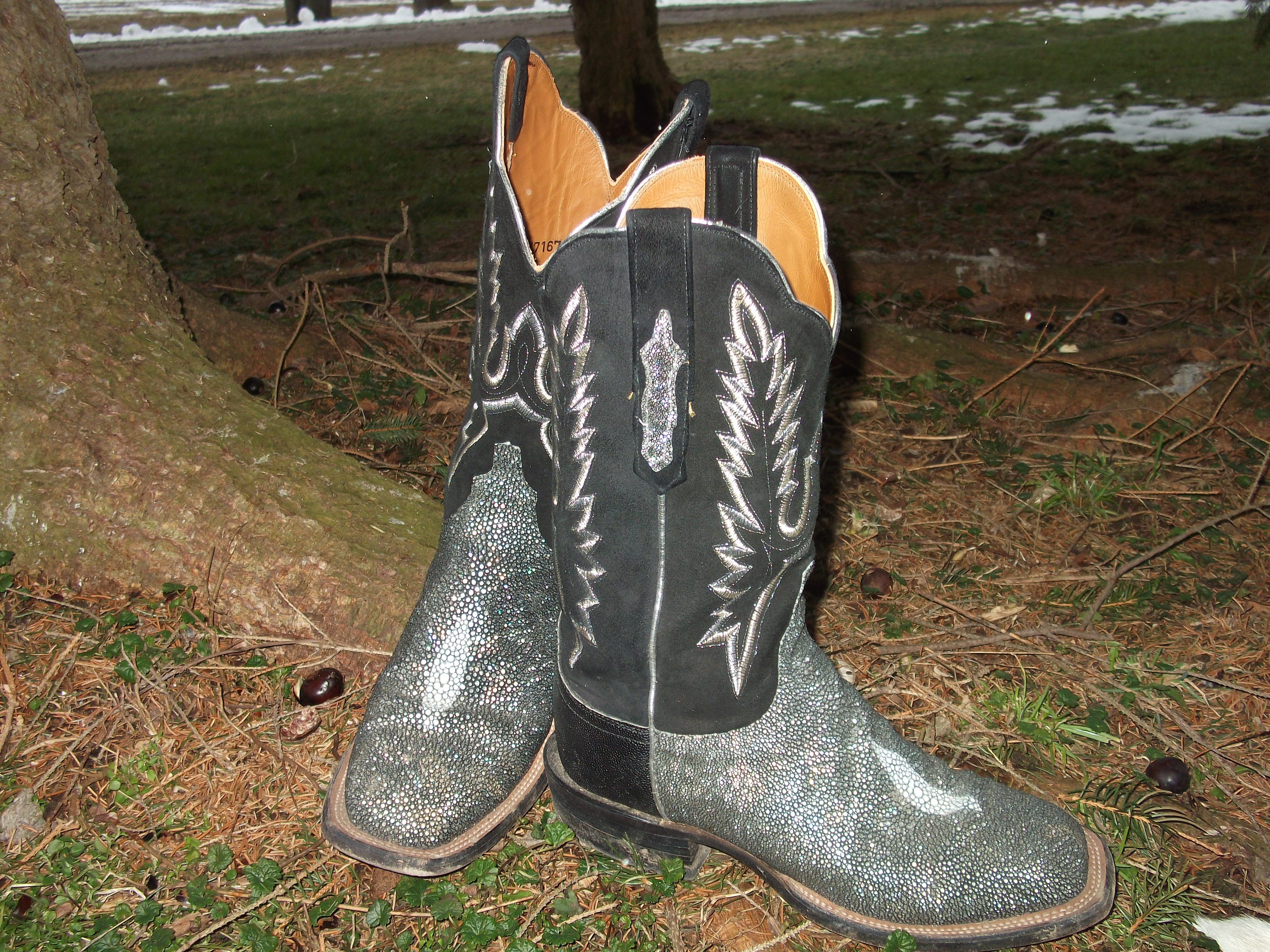 Metallic Silver Lucchese Boots