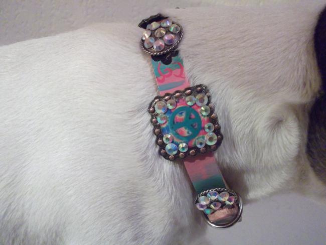 Cowboy Junkie dog collar