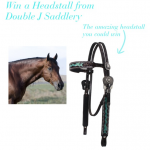 Double J Saddlery Headstall Giveaway