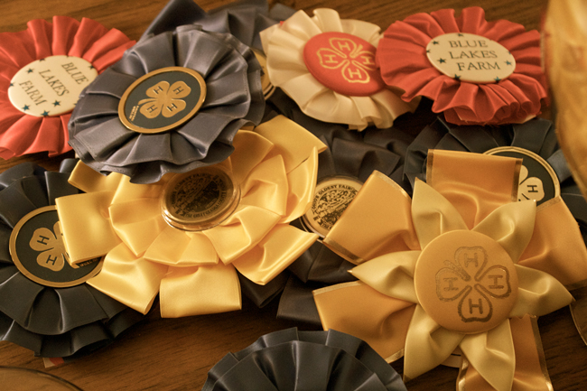 horse show ribbon tops