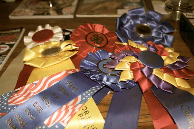 horse show ribbons for decor