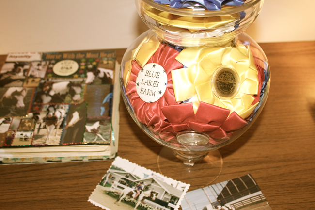 horse show ribbons in a jar