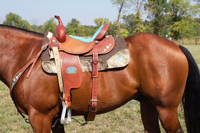 Double J Saddle, Turquoise Addition