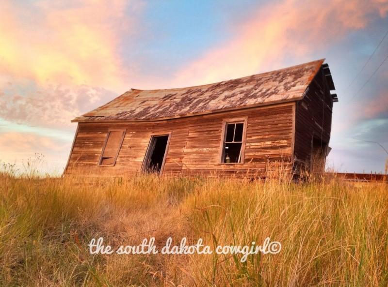 The South Dakota Cowgirl Photography