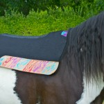Glittery Best Ever Saddle Pads