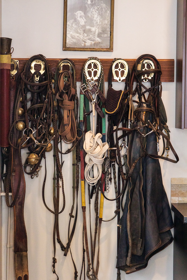 Bridles in the tack room