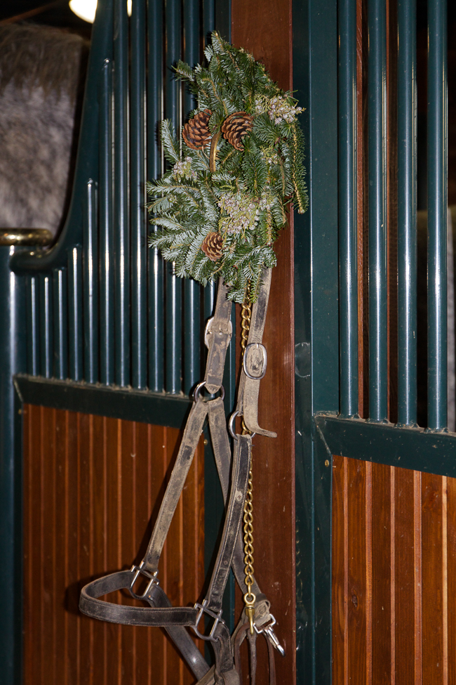 Leather halter and Christmas greenery | Stable Style