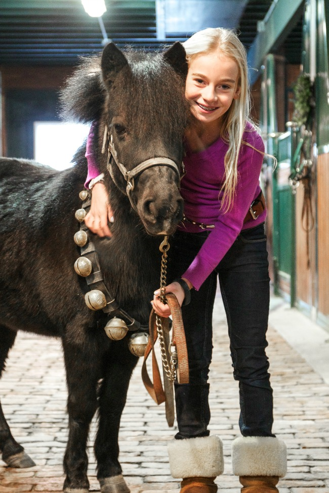 Lizzie and Licorice|Stable Style
