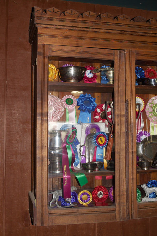Ribbon and trophy case | Stable Style