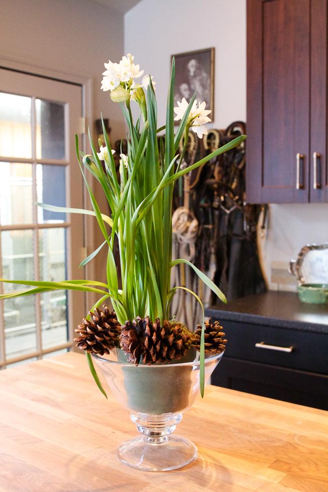 Winter Arrangement with Pine Cones
