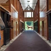 Brick Barn Aisle Envy #horsesandheels