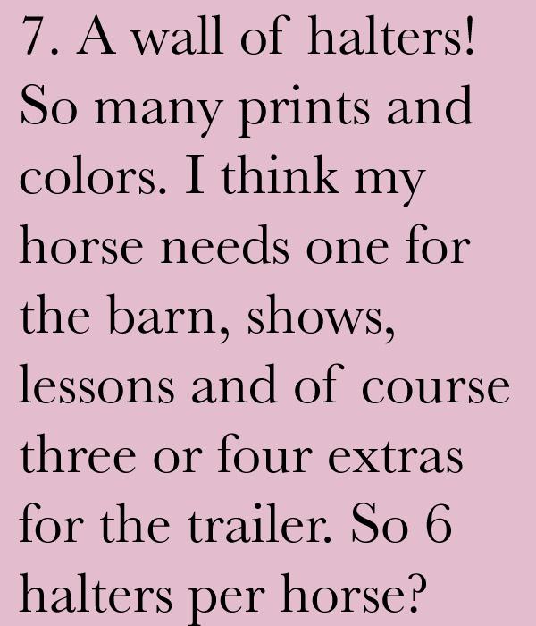 Tack Store Problems #7 | Horses & Heels