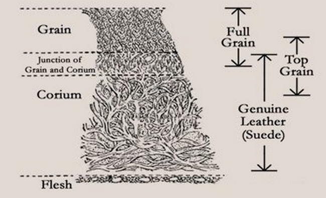 Types of Leather Illustration