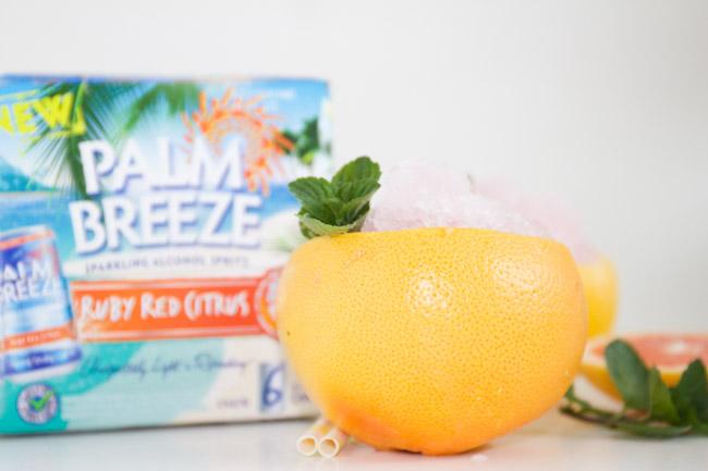 Frozen Ruby Red Citrus Slush