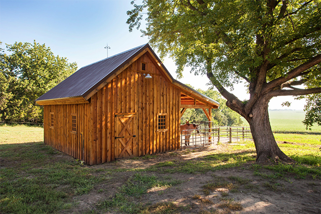 Small wooden horse barn
