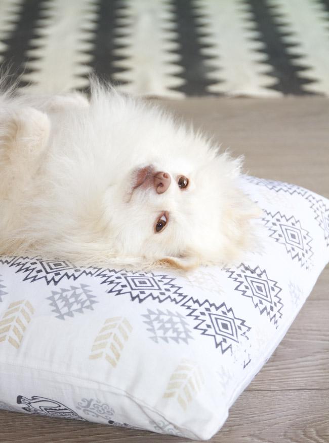 DIY Southwest Fabric Print Dog Bed | Horses & Heels