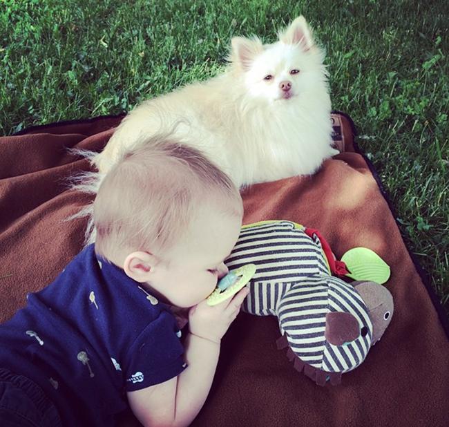 Mango and Wyatt