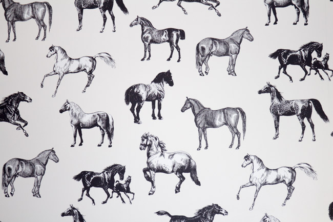 Horse print wall paper | Store Spotlight- Gee Gee Equine