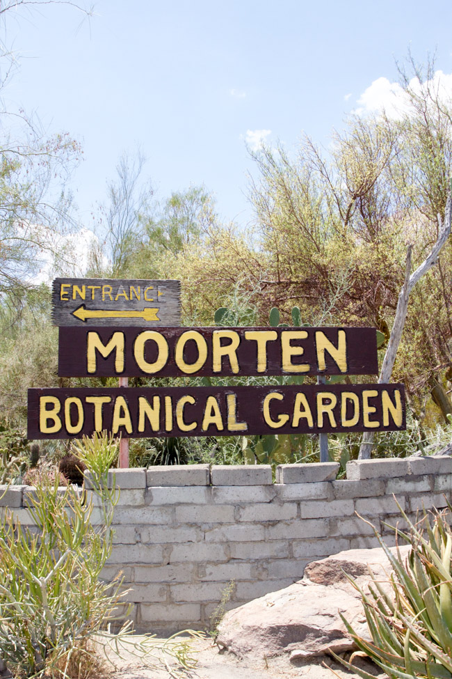 Moorten Botanical Garden and Cactarium