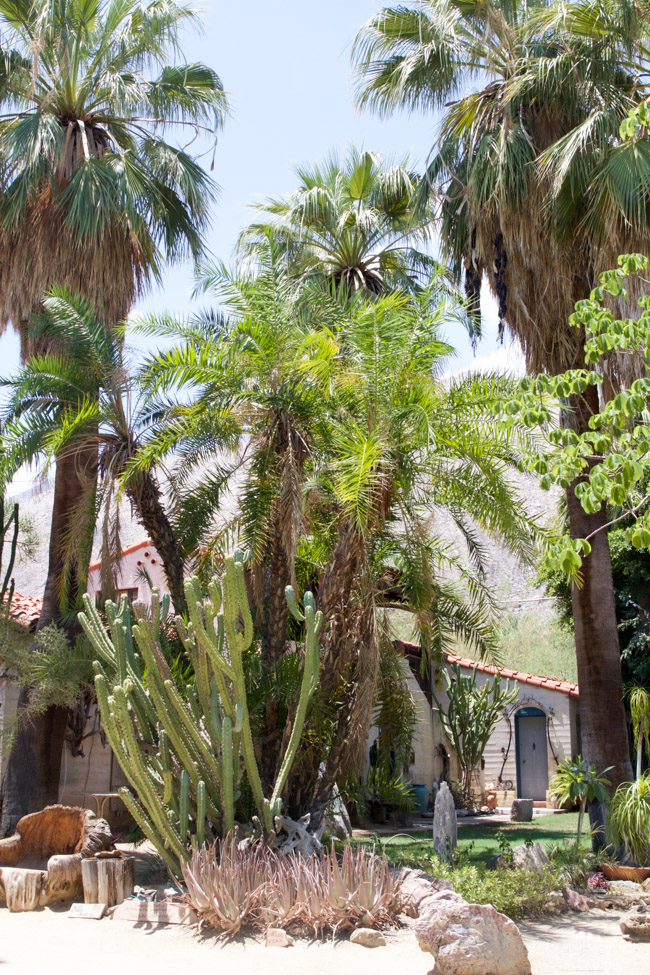 Moorten Botanical Garden in Palm Springs, California