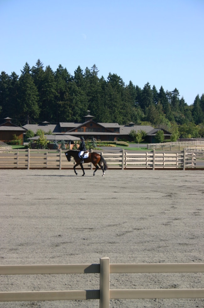 Riding in the outdoor arena at Wild Turkey Farm