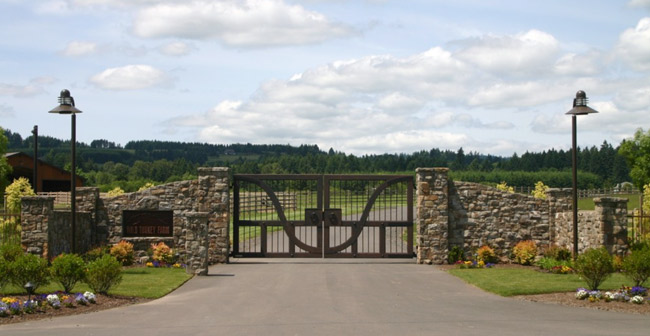 Stone and metal gate entry