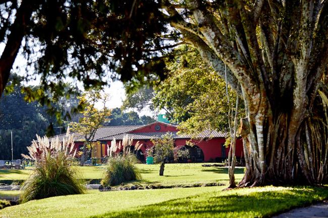 The beautiful Florida grounds