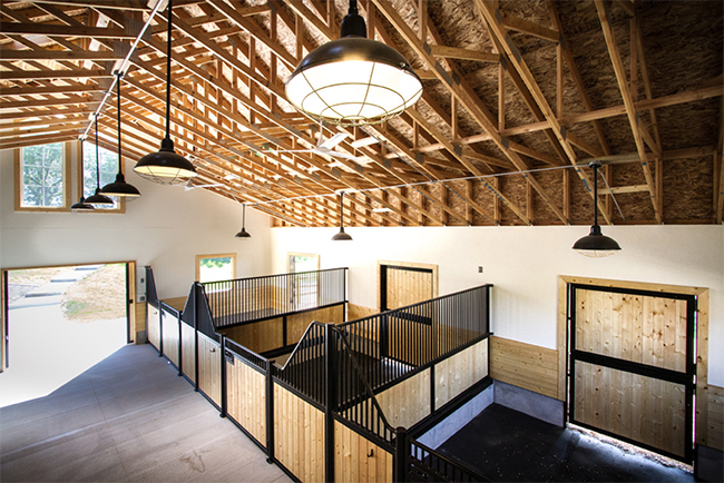 Spacious stalls with high ceilings and dutch doors