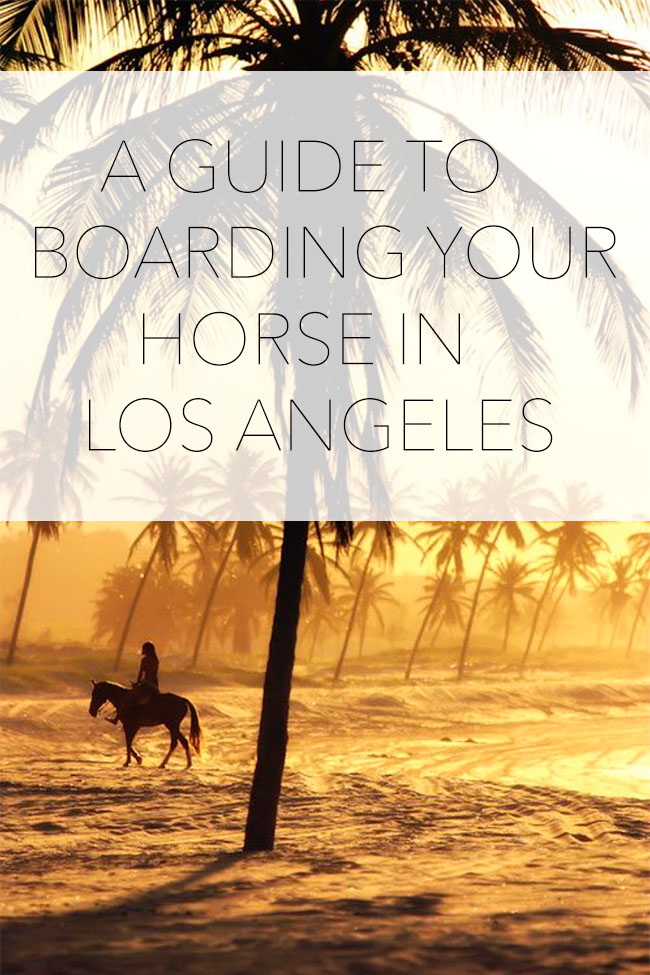 Horse boarding in LA. Real advice from Los Angeles residents