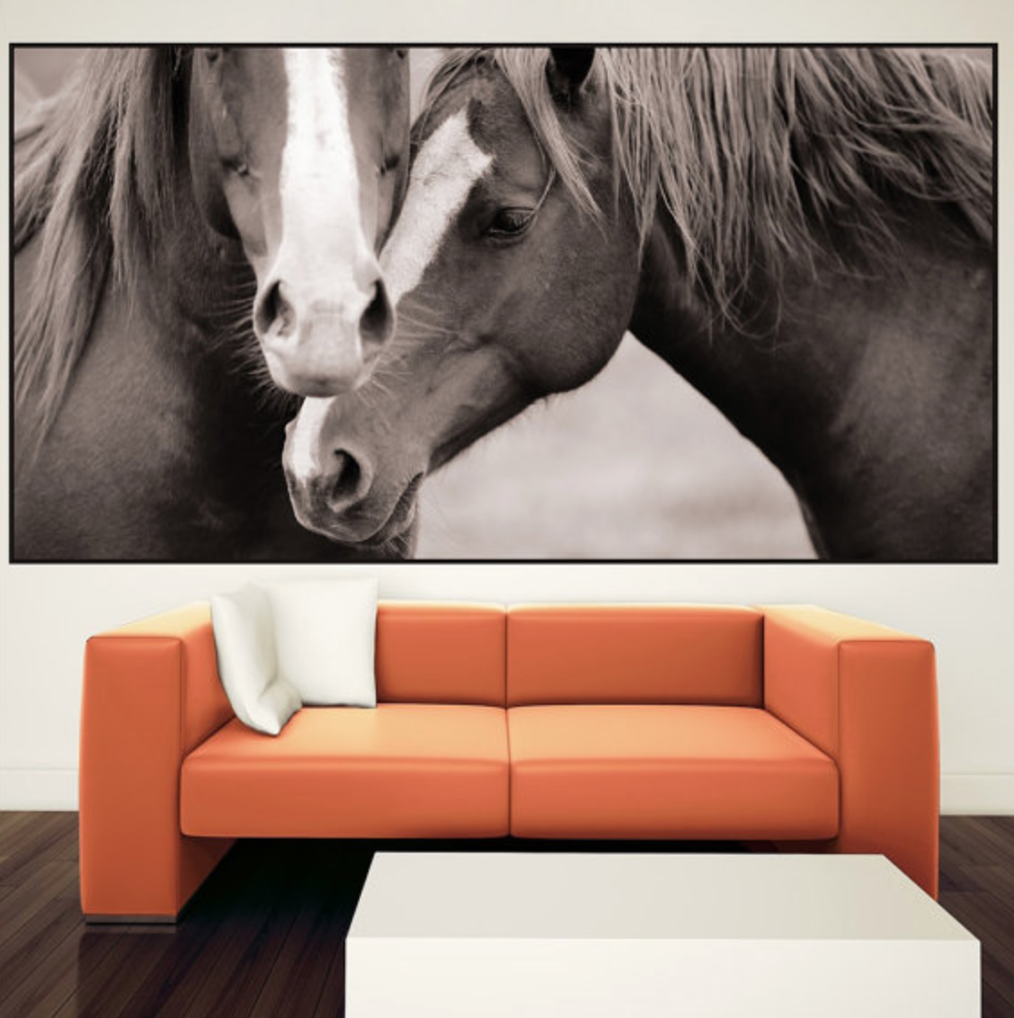 Cute Horse mural vinyl decal