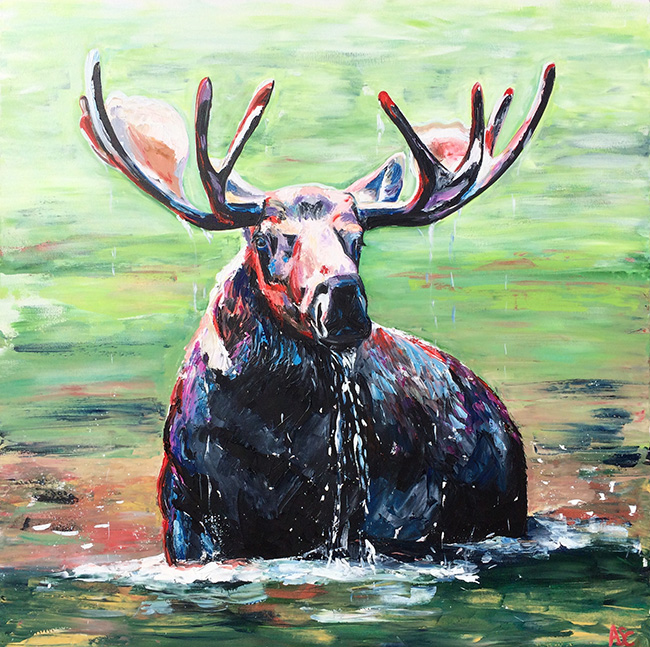Moose Swimming by Alana Clumeck