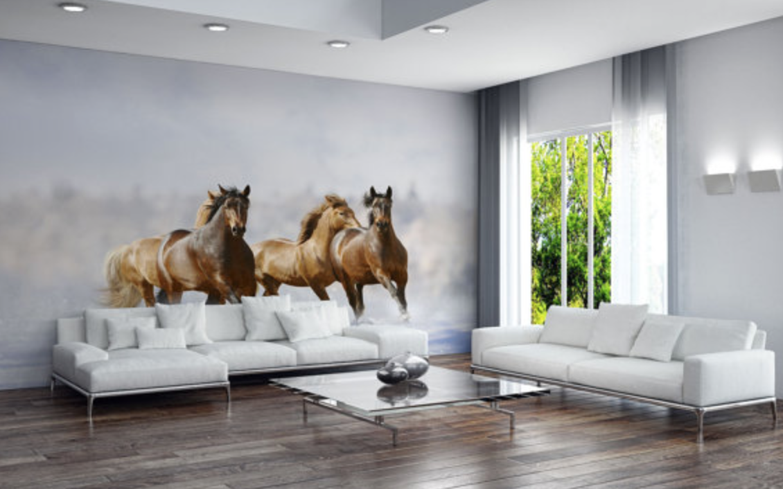10 ways to dress up your walls with vinyl decals horses for Equestrian wall mural