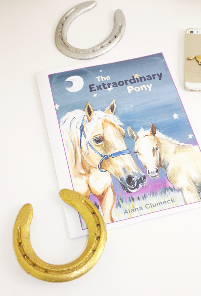 The Extraordinary Pony, a children's book