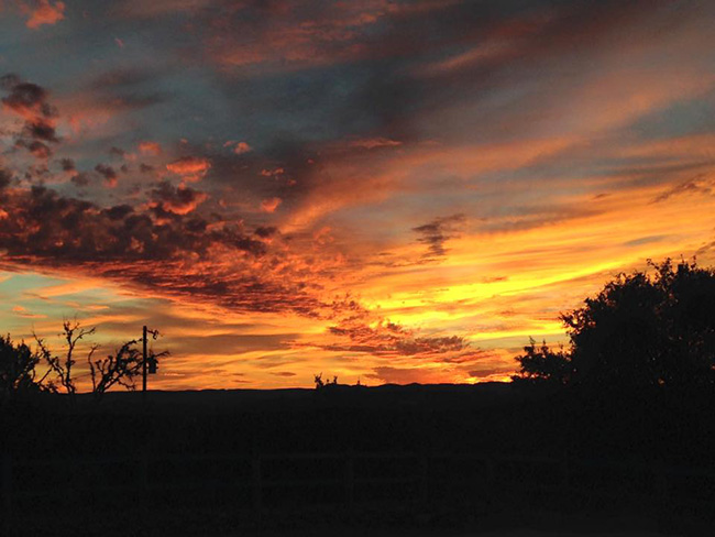 A beautiful Texas sunset over The Sugar & Spice Ranch