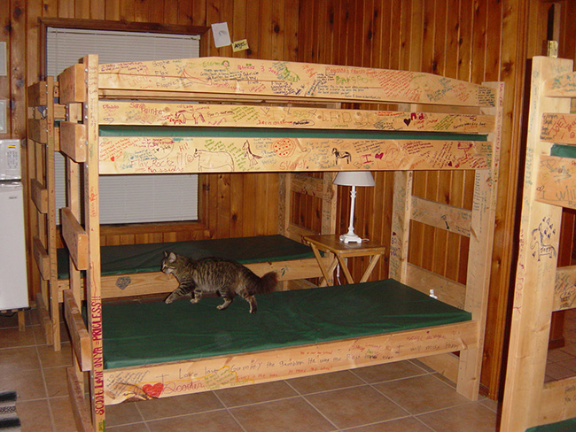 Bunk beds at The Sugar & Spice Ranch