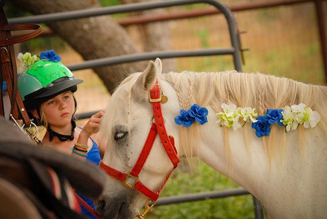 Joey and his rider at The Sugar & Spice Ranch