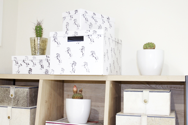 Black and white horse print boxes and cacti plants