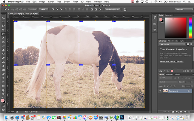 Horse photo being sliced in Photoshop - how to slice photos for art