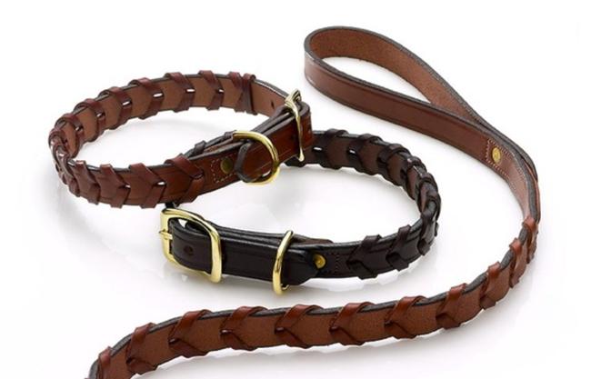 English equestrian dog collar and leash