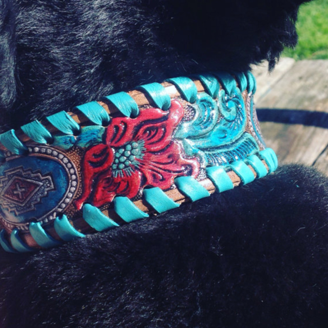 hand painted dog collar