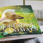 On My Coffee Table: Meditating with Animals