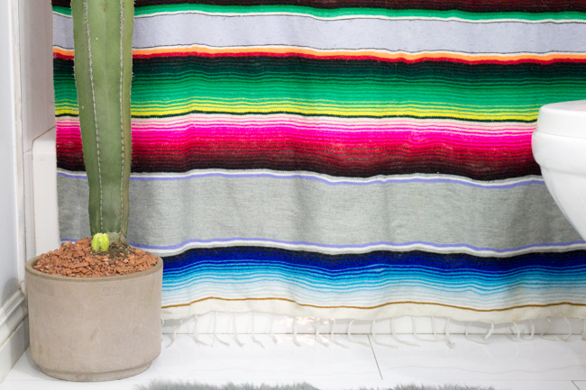 DIY serape shower curtain made from an old blanket and cactus in the bathroom
