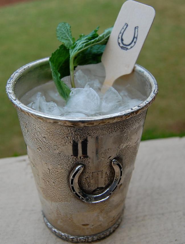 Mint Julep drink stir
