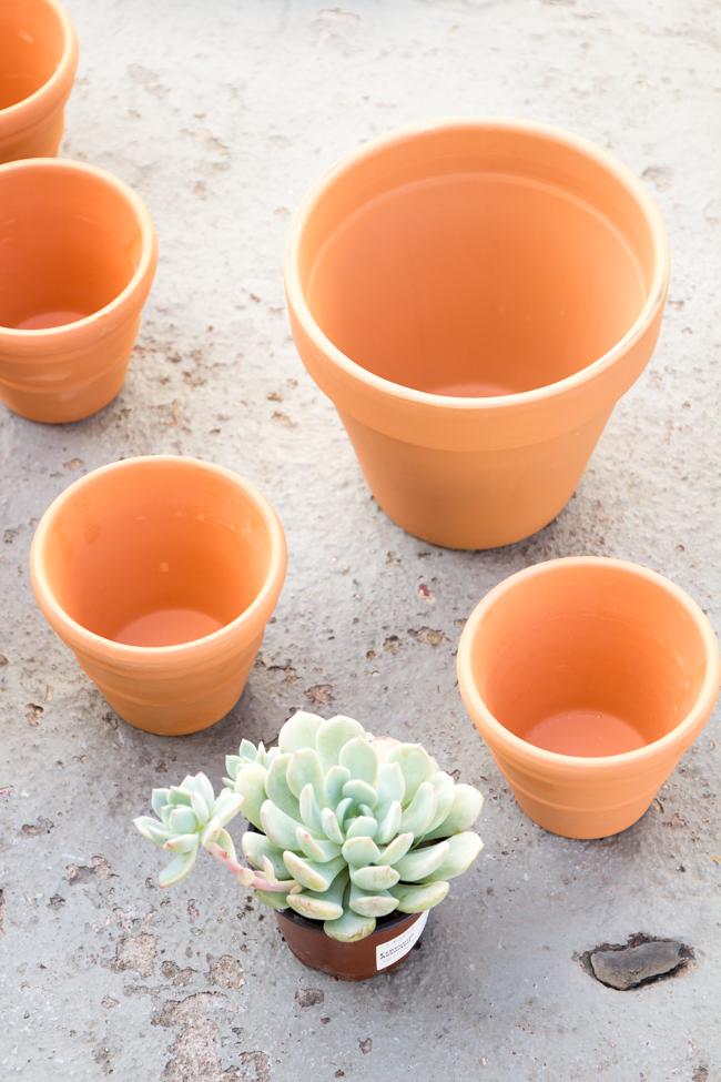 terra cotta pots before