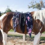 Horses & Heels x Whipin Wild Rags