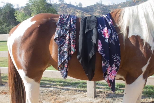 Horses & Heels x Whipin Wild Rags mini series