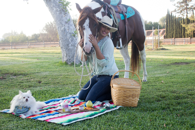 A Perfect Park Picnic with My Pony