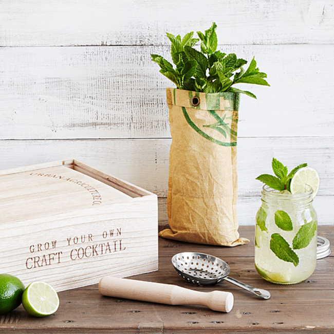 Cocktail Enthusiasts Will Love These Gifts!