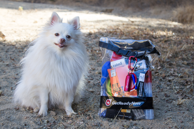 Mango the Pom with Pup & Peep's Road Combo Pack